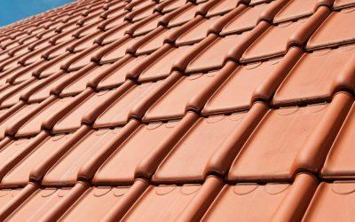 Luijtgaarden - Referentie foto TDN44 Natuurrood - Koramic